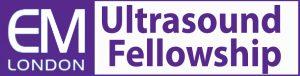 em-fellowship-web-banner